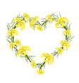 Yellow Crape Myrtle Flowers in A Heart Shape