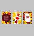 autumn foliage flat banner templates set vector image
