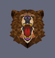 Bear head polygon geometric vector image