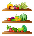 different kinds of fruits and vege vector image