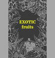 exotic fruits vertical frame vector image vector image