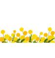 Long format seamless border dandelion flower