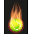Tennis ball with flame vector image vector image