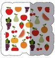background sticker with fruits in irregular shape vector image