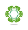 design natural ornament garden plants circle vector image vector image