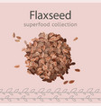 flaxseeds image vector image vector image