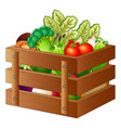 fresh vegetables in a wooden box vector image vector image
