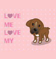 love me love my dog cartoon design vector image vector image
