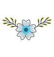 periwinkle flower nature plant leaves decoration vector image