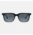 vintage sun glasses vector image vector image