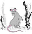 Rat mouse as symbol for year 2020 vector image