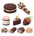 a set of chocolate sweets chocolate products for vector image vector image