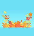 fall autumn colorful gradient paper leaves vector image