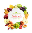 fruits frame realistic background vector image vector image
