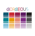 Gorgeous Color Tone vector image vector image