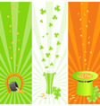 Ireland national banners vector image