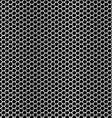 pala stan vector image vector image