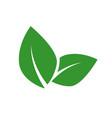 vegan food label concept green leaf vector image