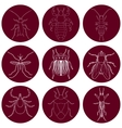 insect icons set Earwig and tick stink bug and vector image