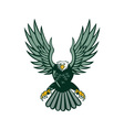 bald eagle swooping wing spread isolated retro vector image vector image