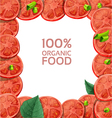 Beautiful frame with fresh tomato slices vector image vector image