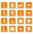 body parts icons set orange vector image vector image