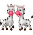 funny two zebras cartoon vector image vector image