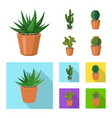 isolated object of cactus and pot icon collection vector image vector image