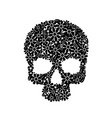 painting skull flowers isolated on black black vector image vector image