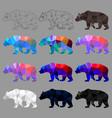 set bear polygon geometric vector image vector image