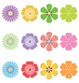 seth colorful flowers vector image