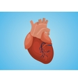 isolated heart with real style and blue vector image