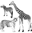 African striped and spotty animals vector image