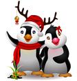 cute penguin cartoon couple vector image vector image
