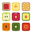 fruit application icons vector image vector image