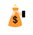 object bag with money vector image