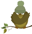 sparrow cold autumn vector image vector image