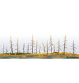 trees after forest fire nature vector image