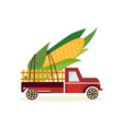 farming harvest concept with big ear of corn in vector image vector image