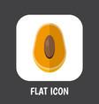 of fruits symbol on mango flat vector image