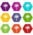 palm tree icon set color hexahedron vector image vector image