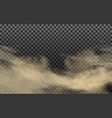 realistic cloud with dirt and soil particles vector image