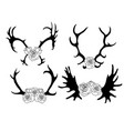 set black and white silhouettes deer and elk vector image vector image