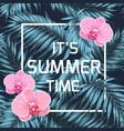 summer time banner orchid palm leaves blue black vector image