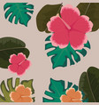 tropical flowers floral leaves monstera vector image