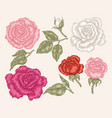 pink red and white rose flowers in vintage style vector image