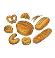 bread baked goods sketch bakery bakeshop food vector image vector image