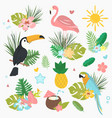 cartoon set of exotic tropical vector image