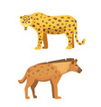 cute jaguar and hyena stands vector image vector image