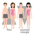 different body shape types vector image vector image